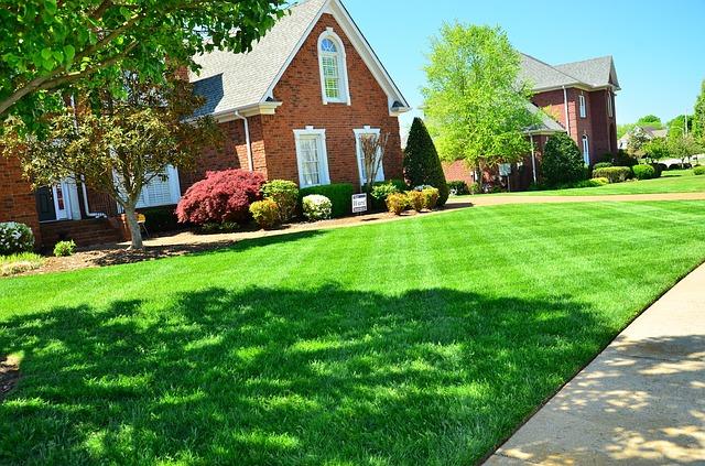 pelouse devant maison