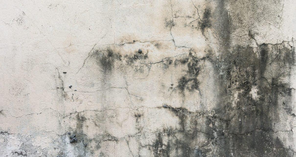 humidité sur les murs